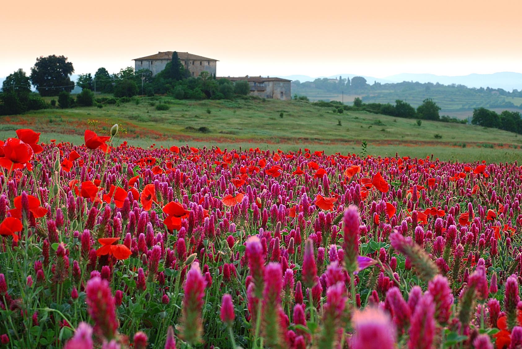Octubre: Los colores de la Toscana Playas del mundo