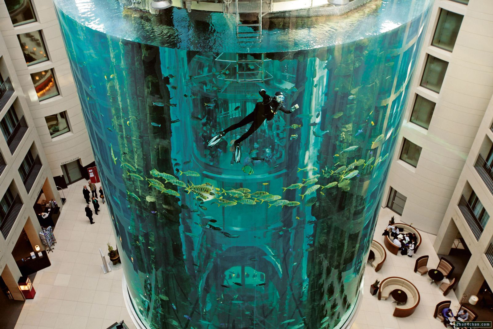 AquaDom acuario en el interior del hotel Radisson en Berlín Playas del mundo