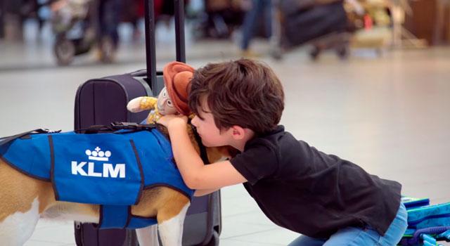 El perro que trabaja en Objetos Perdidos de KLM Playas del mundo