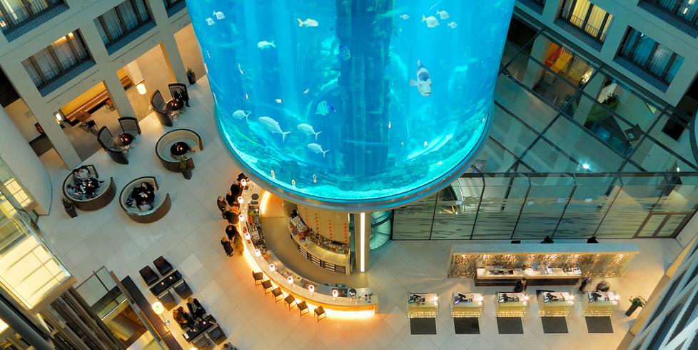 Radisson Blue, hotel con acuario dentro